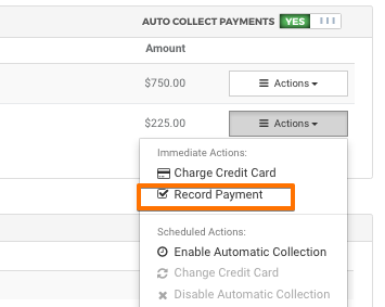 0_1487787254665_record_payment.png